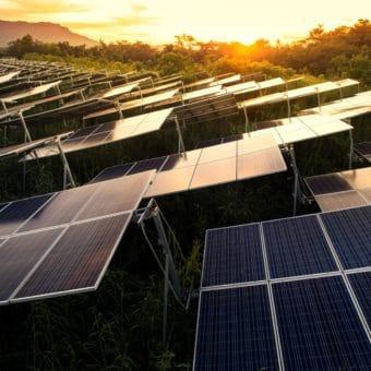 FabTech Solar panels on a solar farm